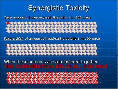 syntox-1